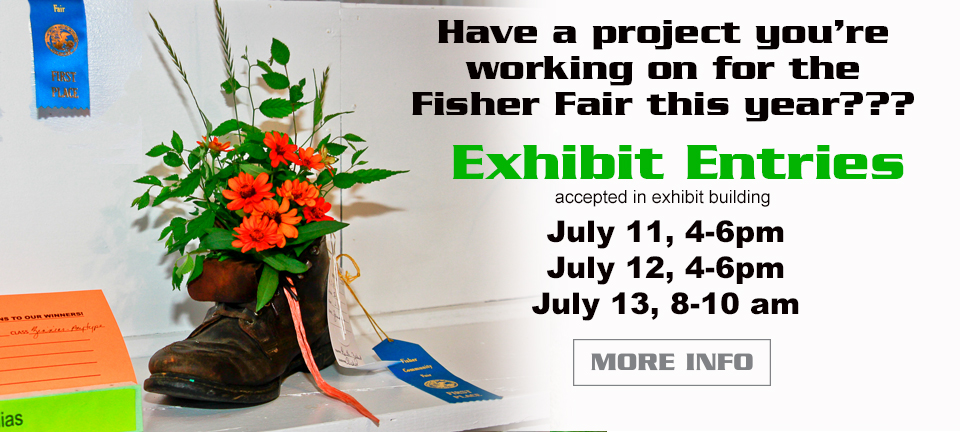 Fisher Fair Exhibits July 11, 2016